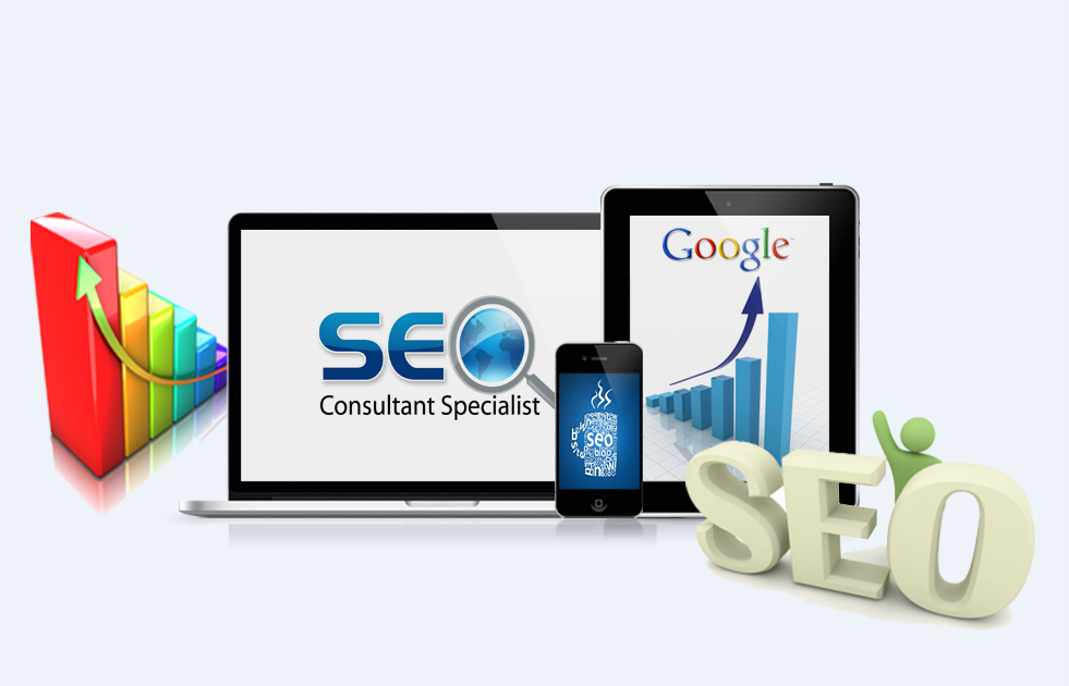 SEO Trainings in delhi and india